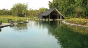 De Lingebrug Zwemvijver